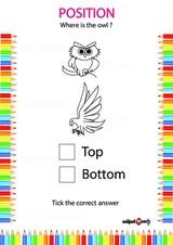 Identify correct position 15