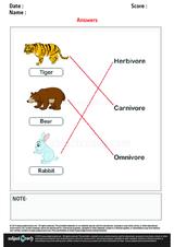 Herbivore Carnivore Omnivore/1