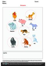 Identify Wild Animals/1